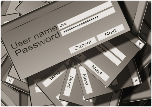 Login Protection & Password Security